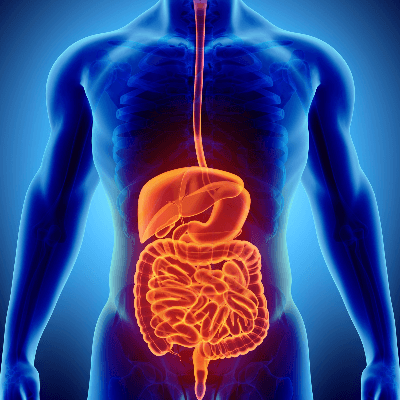 How to Improve Your Digestion Part 1